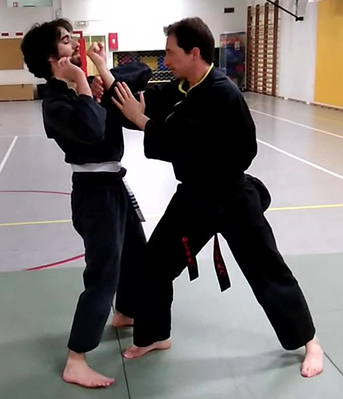 Techniques poings pieds